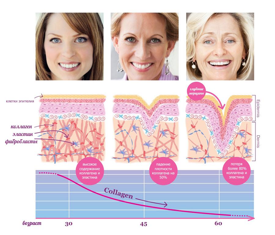 Биологическое старение кожи